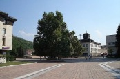 Lovech 3